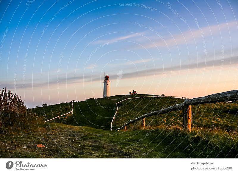 Leuchtturm Dornbusch Natur Ferien & Urlaub & Reisen Pflanze Landschaft Tier Ferne Umwelt Frühling Gefühle Wiese Wege & Pfade Freiheit Tourismus Verkehr Insel