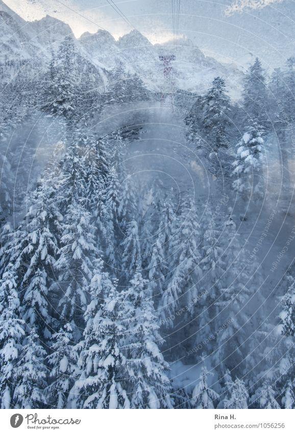AbWärts II Natur Ferien & Urlaub & Reisen Landschaft Wolken Winter Wald kalt Umwelt Berge u. Gebirge Schnee natürlich Horizont Eis Ausflug Aussicht Lebensfreude