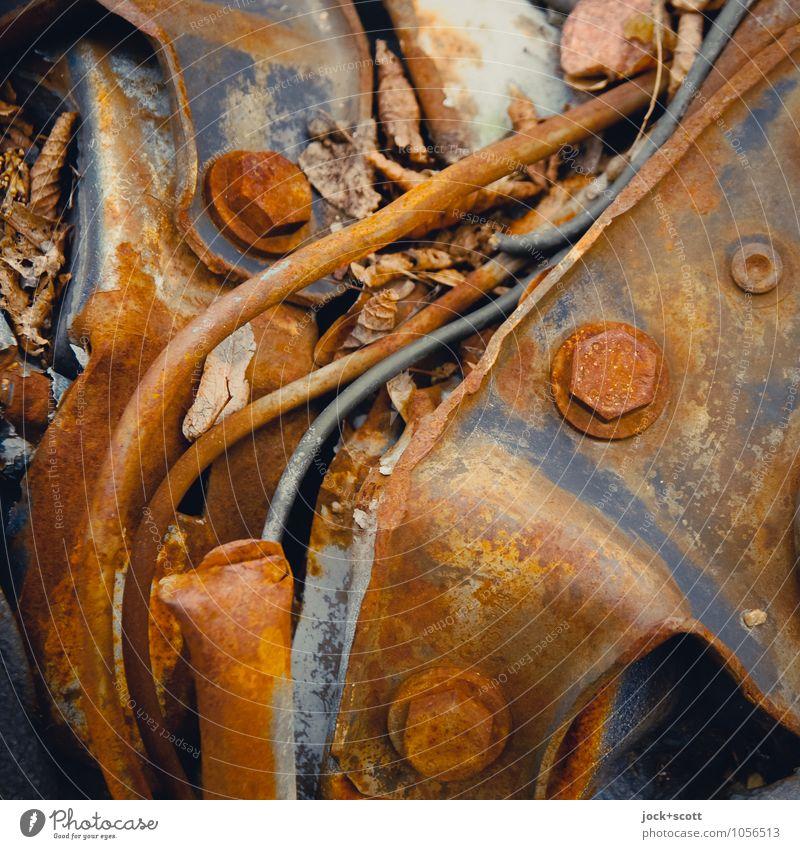 Korrosionselement Blatt Schraubenmutter Leitung Metall Rost Ecke alt dreckig fest hässlich kaputt braun Müdigkeit Erschöpfung verschwenden Schwäche stagnierend