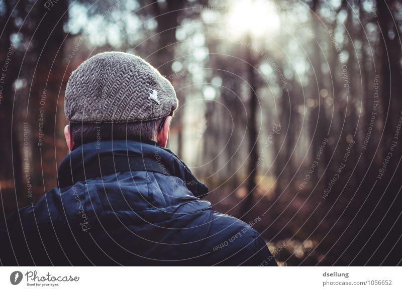 Rücken eines Mannes der in den Wald schaut und Sonne genießt Lifestyle Mensch maskulin Erwachsene Kopf 1 18-30 Jahre Jugendliche Jacke Hut Mütze beobachten