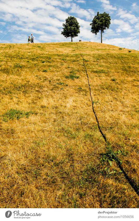 Angeschnittener Hügel Natur Ferien & Urlaub & Reisen Stadt Pflanze Sommer Landschaft Wolken Freude Tier Umwelt Gefühle Wiese Park Zufriedenheit Tourismus wandern