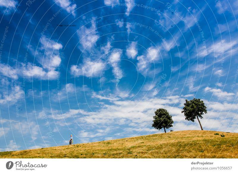Mount Klotz IV Natur Ferien & Urlaub & Reisen Stadt Pflanze Sommer Baum Landschaft Umwelt Gefühle Wiese Freiheit Park Tourismus Kraft wandern Ausflug