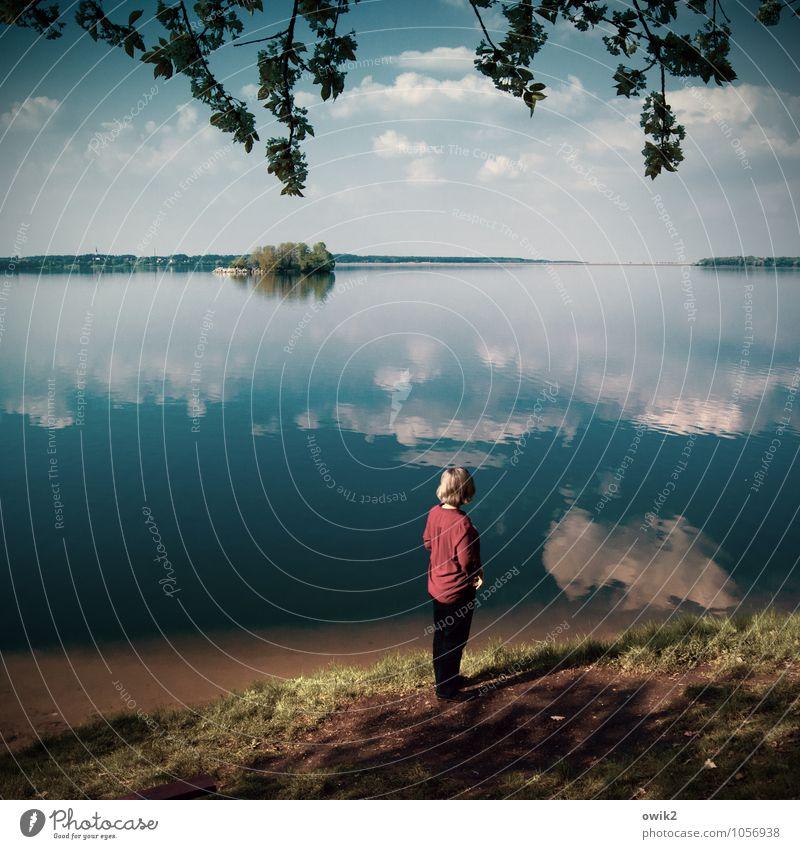 Stilles Hoffen Frau Erwachsene 1 Mensch Umwelt Natur Landschaft Pflanze Urelemente Erde Wasser Himmel Wolken Horizont Gras Blatt Zweig Laubbaum Seeufer Insel
