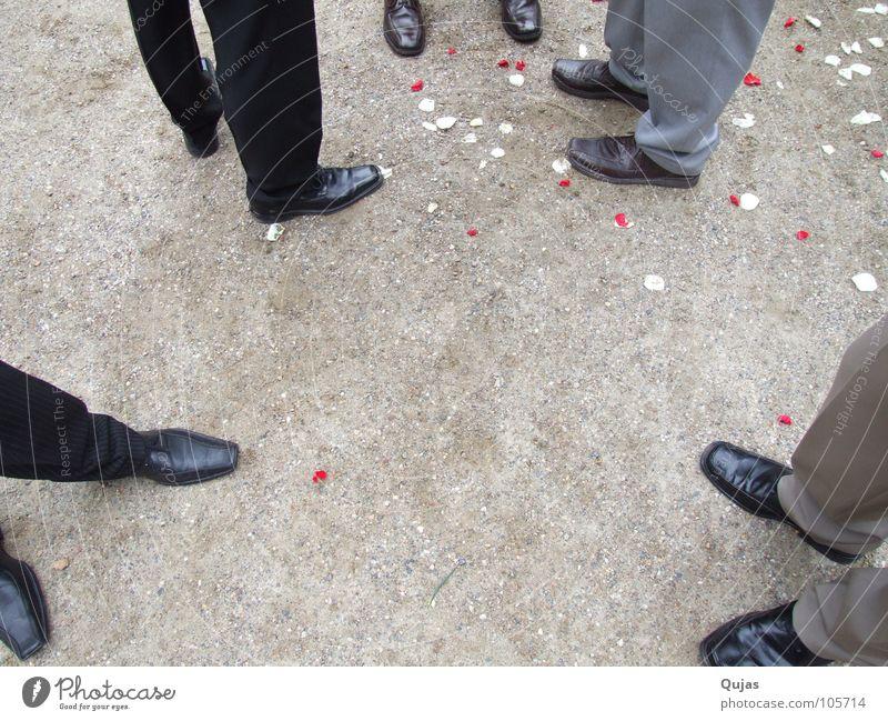Schuhversammlung Schuhe Anzug stehen gut fein Anlass Blütenblatt Mann Finale Ereignisse Hochzeitsgesellschaft Menschengruppe Feste & Feiern warten Bodenbelag
