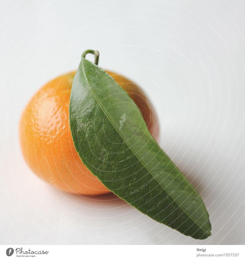 Fastenzeit... Lebensmittel Frucht Mandarine Ernährung Bioprodukte Vegetarische Ernährung Blatt liegen einfach frisch Gesundheit lecker natürlich rund süß grün