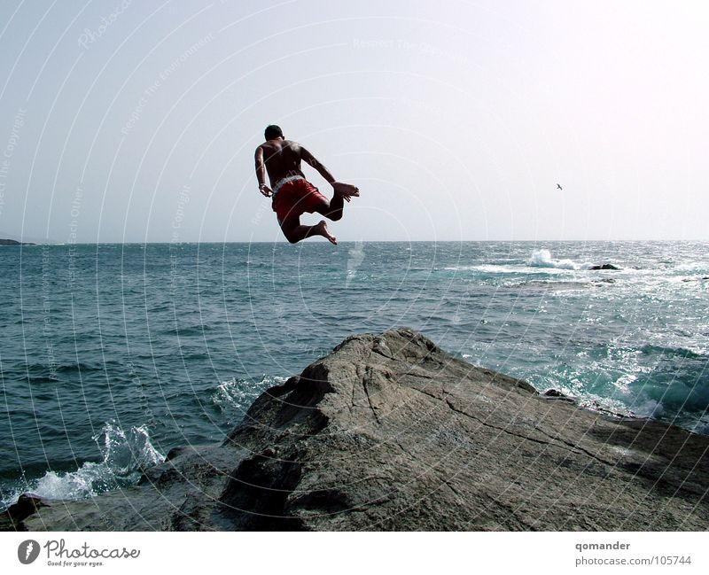 Auf dem Horizont Himmel Meer blau springen Stein Kraft Vogel Wellen Brandung Wassersport Klippe
