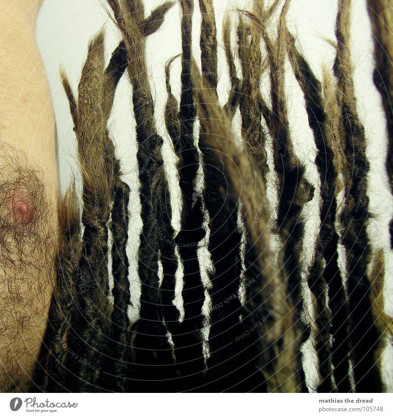 Mathias The Dread VII Mensch Mann dunkel Haare & Frisuren hell Kraft dreckig Haut maskulin bedrohlich lang stark Falte Lichtspiel Nervosität verdeckt