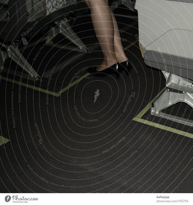 jet-legs (© by eylab) Ferien & Urlaub & Reisen Arbeit & Erwerbstätigkeit Beine Schuhe fliegen Beginn Sicherheit Luftverkehr Güterverkehr & Logistik Ziel