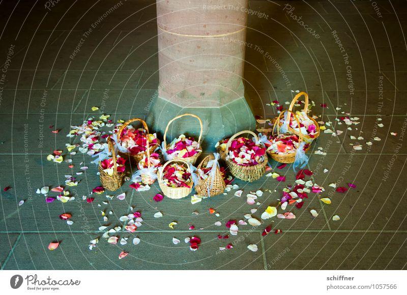 Missverständnis   Nein gesagt Blume Blatt Blüte rosa rot Blütenblatt Hochzeit verteilen Säule Sandstein Korb Hippie Hochzeitszeremonie Außenaufnahme