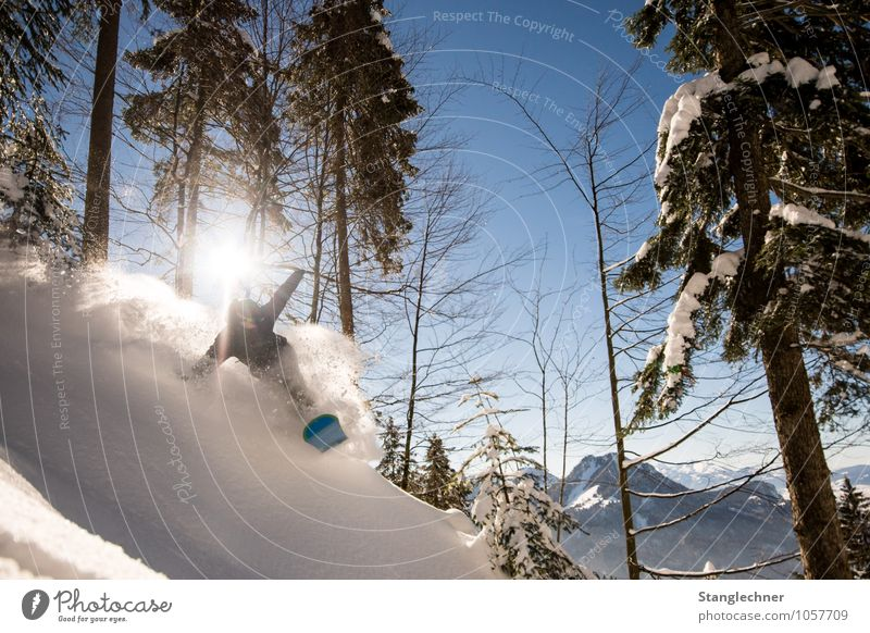 Powder run Sport Wintersport Sportler Snowboard Freestyle maskulin 1 Mensch Umwelt Natur Himmel Sonne Sonnenlicht Pflanze Baum Berge u. Gebirge Gipfel
