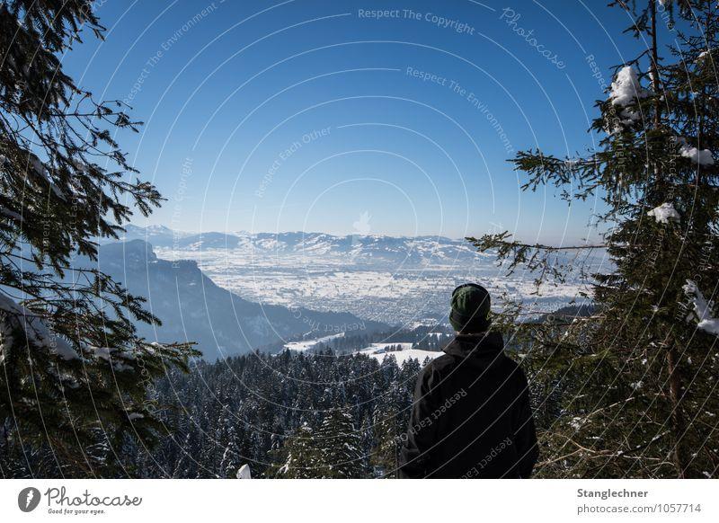 the view Mensch 1 Umwelt Natur Landschaft Wolkenloser Himmel Winter Schönes Wetter Schnee Baum Wald Alpen Berge u. Gebirge Gipfel Schneebedeckte Gipfel
