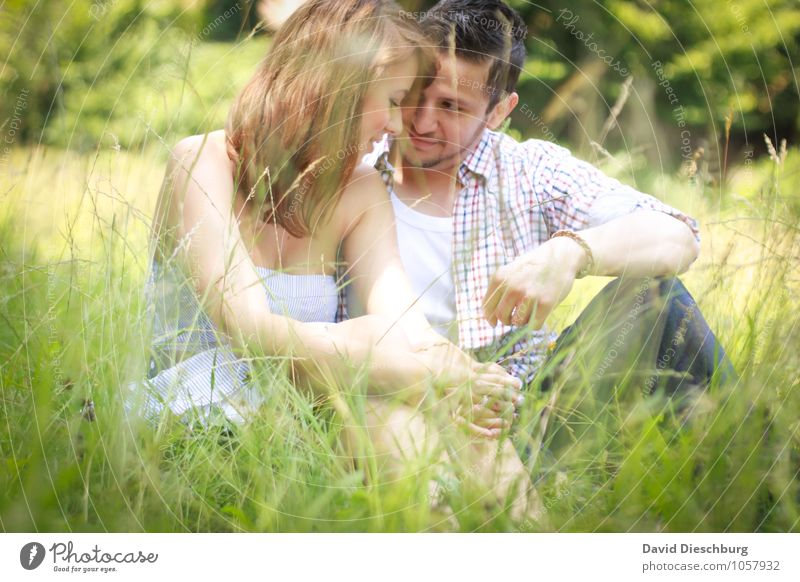 Gemeinsam genießen Mensch Frau Natur Jugendliche Mann Sommer Junge Frau Junger Mann 18-30 Jahre Erwachsene Gefühle Wiese Liebe feminin Frühling Glück
