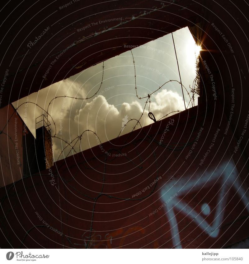 spamfilter Brief Post Briefumschlag Graffiti sprühen Spray Stacheldraht Draht Wolken E-Mail Postfach Briefkasten Schlitz Gegenlicht Filter filtrieren air clouds