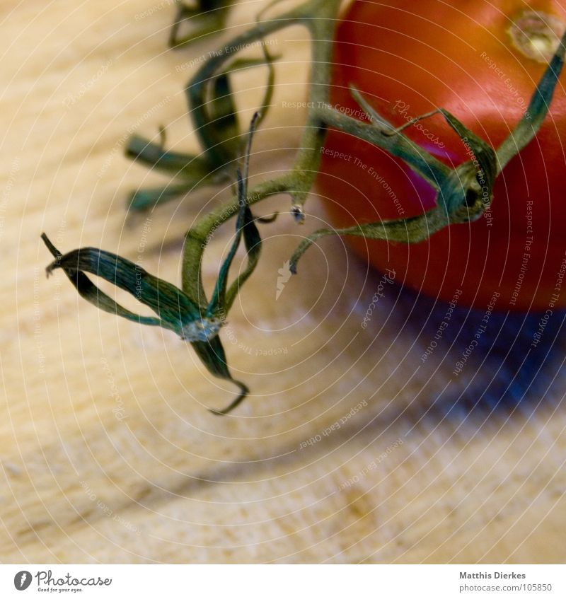 TOMATE grün rot Holz Gesundheit Wohnung Lebensmittel Ernährung Gesunde Ernährung lesen Kochen & Garen & Backen Küche Gemüse Appetit & Hunger lecker Restaurant Wohlgefühl