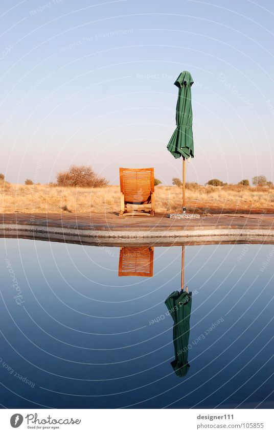 Namibischer Spiegel Afrika Erholung Unendlichkeit Liege Liegestuhl Morgen Denken Namibia Schwimmbad ruhig Sonnenschirm Reflexion & Spiegelung träumen Wasser