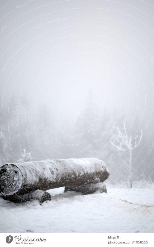 Kalt im Wald Umwelt Natur Winter Wetter schlechtes Wetter Nebel Eis Frost Schnee Schneefall Holz kalt Parkbank Winterurlaub Winterstimmung wandern Rennsteig
