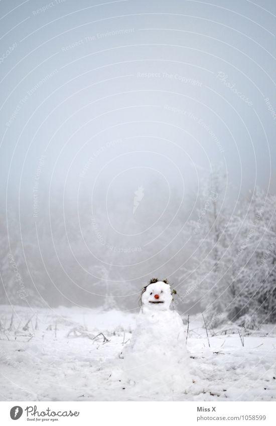 Servus Freizeit & Hobby Spielen Winter Schnee Winterurlaub Garten Weihnachten & Advent Silvester u. Neujahr Mensch 1 Himmel Wetter Eis Frost Schneefall