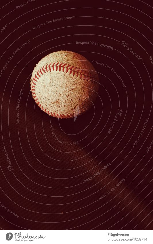Baseball Lifestyle Freizeit & Hobby Spielen Sport Ballsport Sportler Sportstätten Sportveranstaltung Stadion Erfolg Baseballmütze Baseballschläger