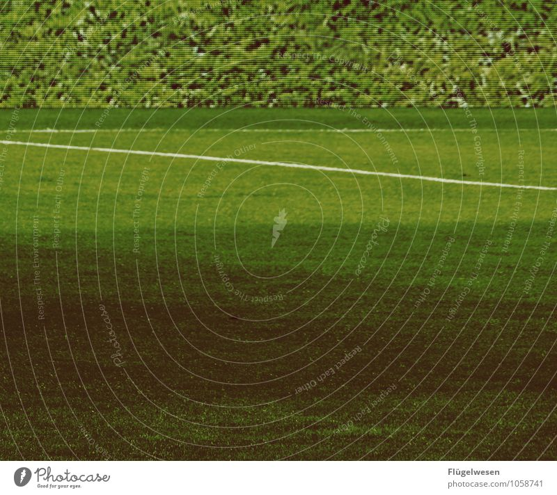 LED-(Banden)Rasen und echter Rasen Sport Ballsport Sportler Sportmannschaft Tribüne Sportveranstaltung Erfolg Verlierer Sportstätten Fußballplatz Stadion Umwelt