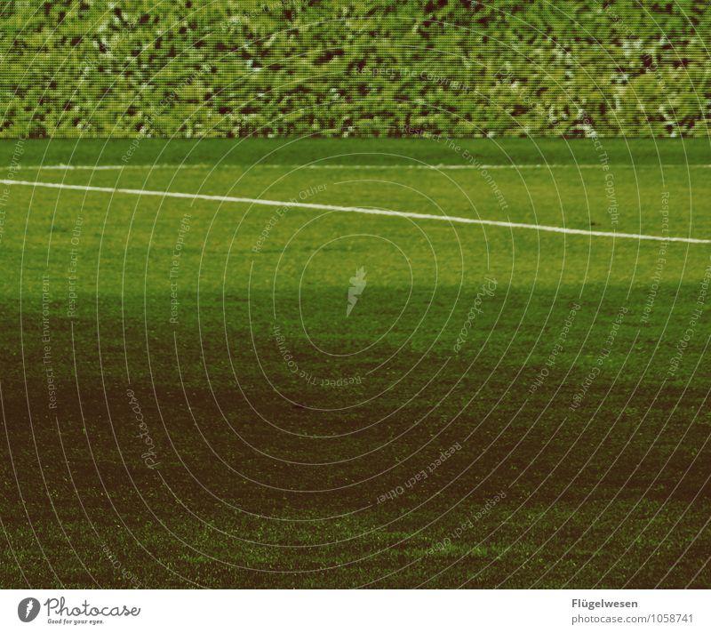 LED-(Banden)Rasen und echter Rasen Umwelt Wiese Gras Sport Erfolg laufen Fußball Sportmannschaft Ball Sportrasen Doppelbelichtung Sportveranstaltung Sportler