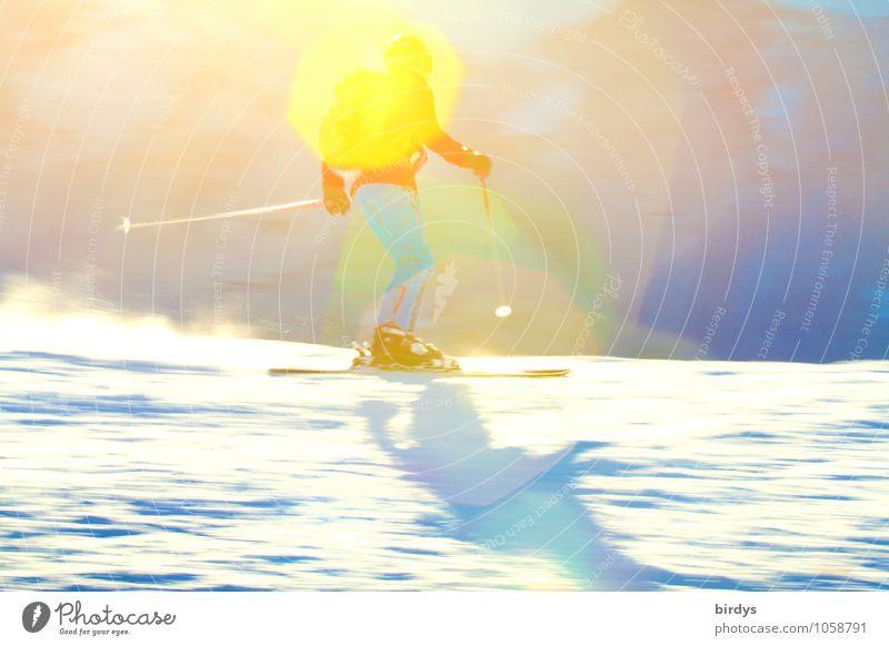 ideales Skiwetter Freude Freizeit & Hobby Tourismus Winter Schnee Winterurlaub Skifahrer alpin Skifahren Skipiste 1 Mensch 18-30 Jahre Jugendliche Erwachsene