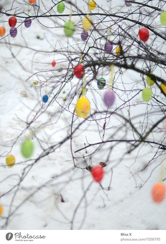 Viele Eier Dekoration & Verzierung Ostern Himmel Frühling Baum hängen mehrfarbig Osterei Sträucher Ast Zweig Zweige u. Äste Farbfoto Muster Menschenleer