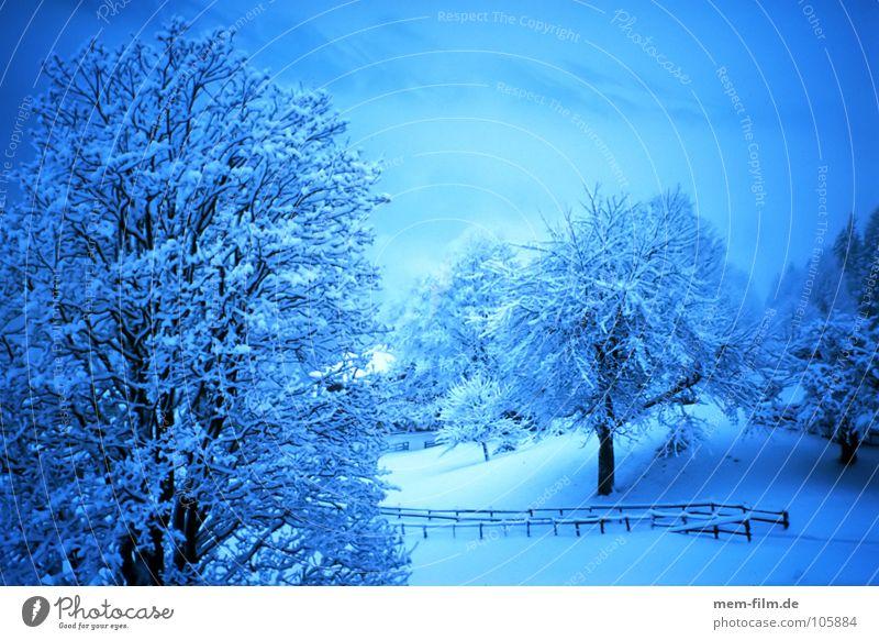 blaue stunde in weiß Schneelandschaft Winter kalt Schnellzug Neuschnee Dezember Januar weis Eis snow cold Teile u. Stücke Klimawandel Berge u. Gebirge Alpen