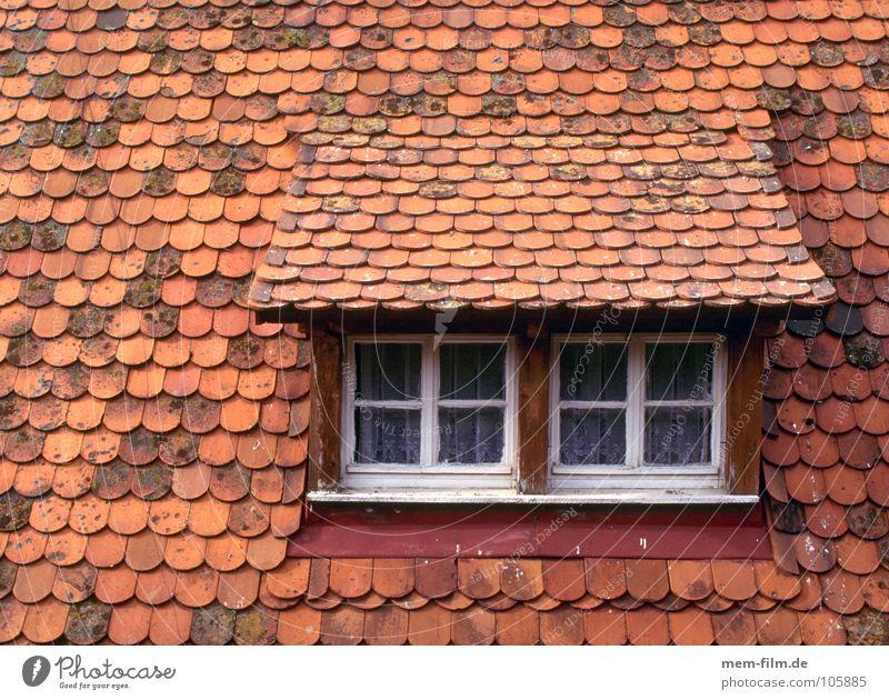 dachfenster Dachgaube Dachfenster Backstein Haus Holz Dachfirst Muster Fenster Dachziegel Detailaufnahme alt Biberschwänze Hütte Stein Fliesen u. Kacheln