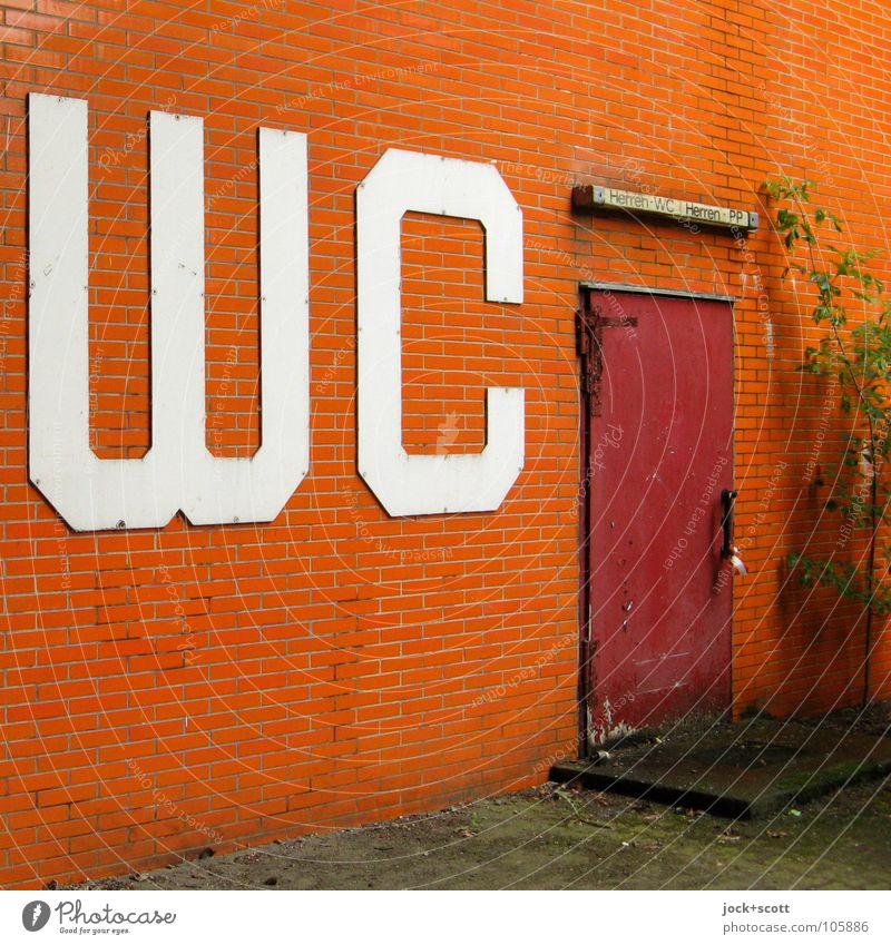 WC ZU Charlottenburg Gebäude Tür Schilder & Markierungen dreckig nerdig retro orange Dienstleistungsgewerbe geschlossen Wandverkleidung Öffentlich schäbig