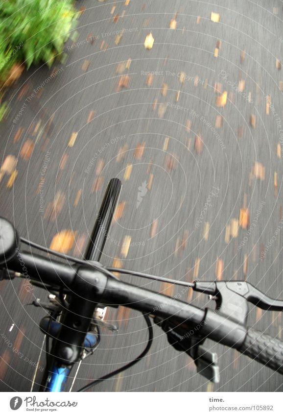 Briefkastenleerung Herbst Spielen Wege & Pfade Bewegung Gesundheit Fahrrad Ausflug Geschwindigkeit fahren Asphalt Mütze Rad Fahrradfahren Verkehrsmittel Bremse Fahrradlenker