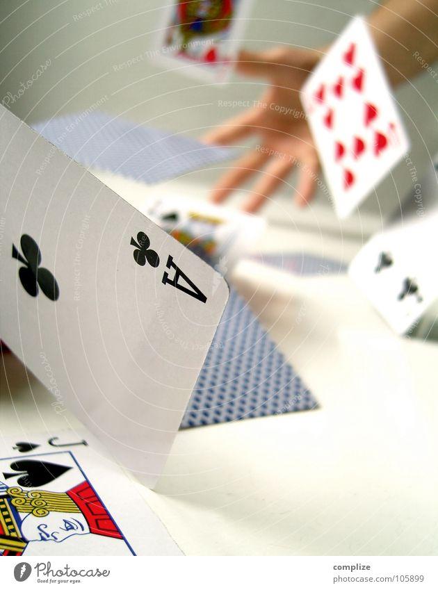 der Spielverderber Mensch Mann Hand Spielen Spielkarte Glück 2 Rücken Herz fliegen hoch Erfolg Tisch Zukunft Hoffnung Wunsch