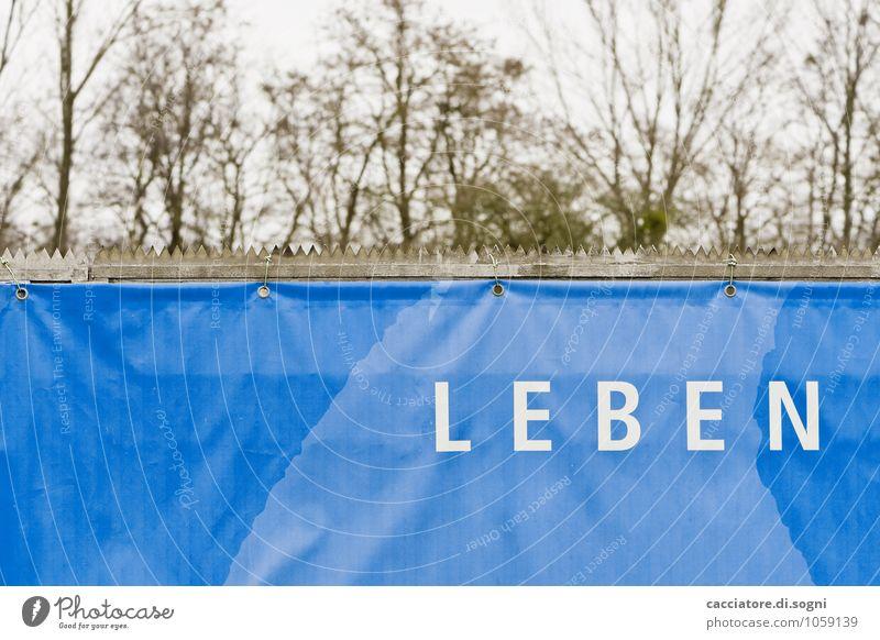 Leben Landschaft Herbst Winter Garten Park Mauer Wand Zaun Abdeckung Folie Sichtschutz Windschutz Plakat Plakatwand Schriftzeichen Schilder & Markierungen