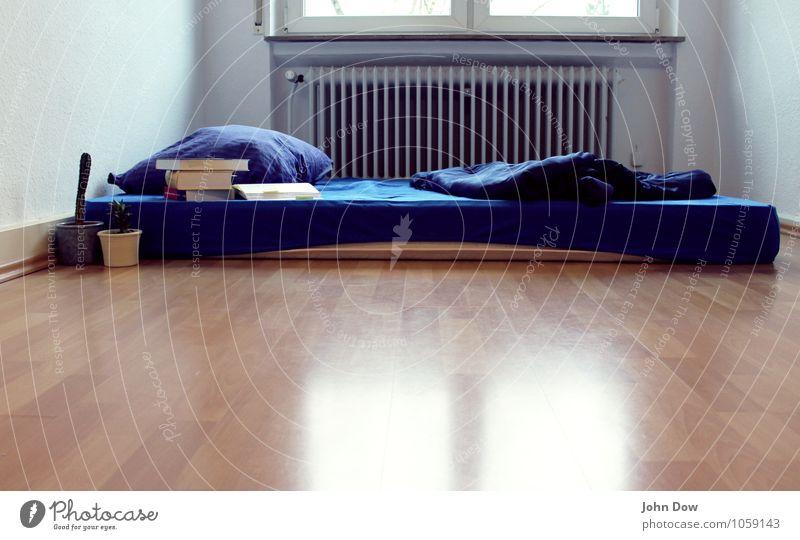 Im Schlaf studieren. Bildung Studium lernen Student schlafen frei blau Schlafmatratze Topfpflanze Buch Buchseite Heizung Autofenster Kissen Decke Schlafplatz