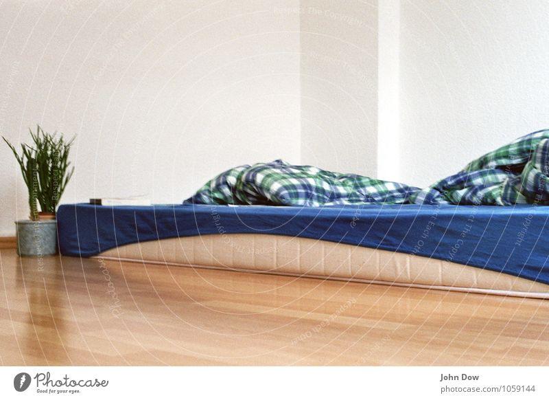 blau kariert Häusliches Leben Topfpflanze schlafen Müdigkeit Bettwäsche Bettdecke Bettlaken Schlafmatratze spartanisch bescheiden gemütlich hell Kissen