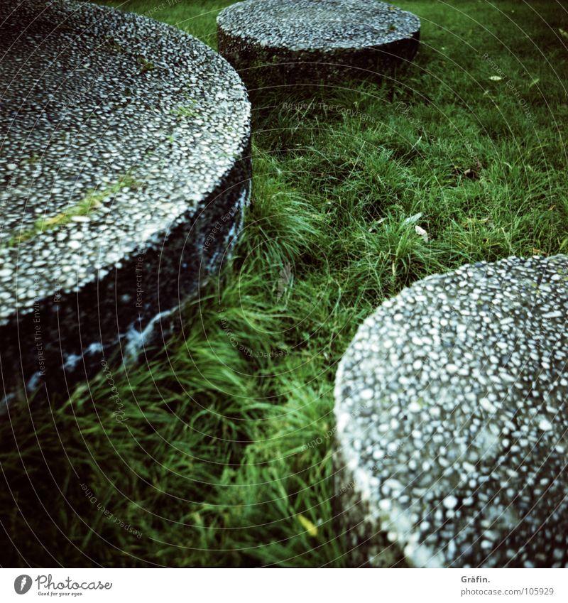 spring ins Feld grün Wiese Garten Gras grau Park Kunst Beton 3 Kreis Rasen Punkt Mittelformat Alster Cross Processing Steinplatten