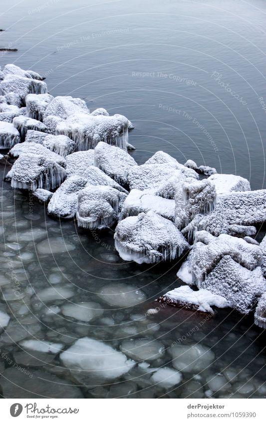Grenze aus Eis Ferien & Urlaub & Reisen Tourismus Ausflug Abenteuer Winterurlaub Umwelt Natur Landschaft Pflanze Tier Urelemente Schönes Wetter