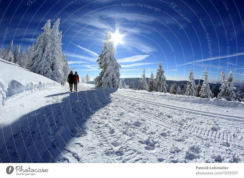 Winterspaziergang auf dem Feldberg Mensch Himmel Natur Ferien & Urlaub & Reisen Jugendliche Sonne Erholung Landschaft 18-30 Jahre Wald Erwachsene
