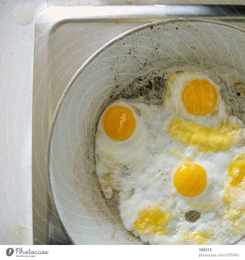 I LOVE WACHTELEI alt weiß gelb Wärme klein Metall Brand Ernährung Kochen & Garen & Backen Physik heiß Geschirr lecker Ei Abendessen Fressen