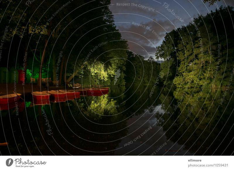 am See Rudern Natur Wasser Sommer Schönes Wetter Baum Seeufer Erholung träumen blau grau grün rot Romantik Gelassenheit ruhig Zufriedenheit Einsamkeit Idylle