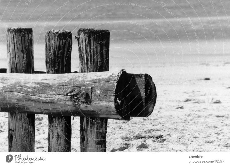 Buhnenbefestigung Holz Strand Meer Detailaufnahme Nordsee