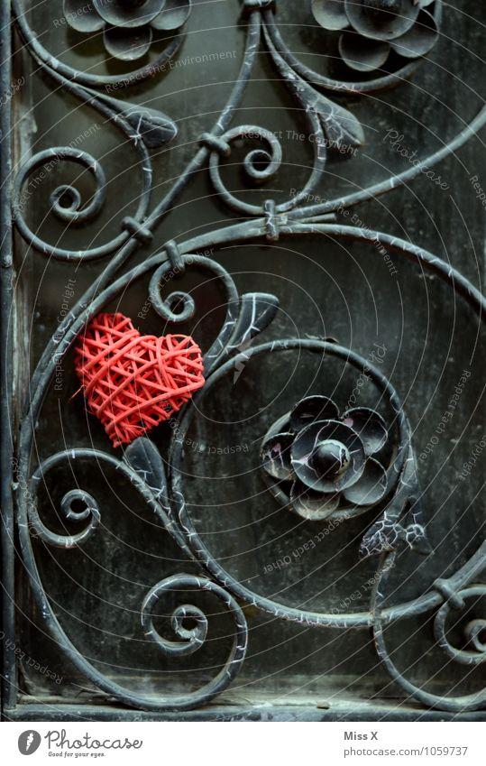 Verschlungen rot Blume Gefühle Liebe Blüte Stimmung Metall Fassade Dekoration & Verzierung Tür Herz Romantik Kitsch Rose Zaun Rost