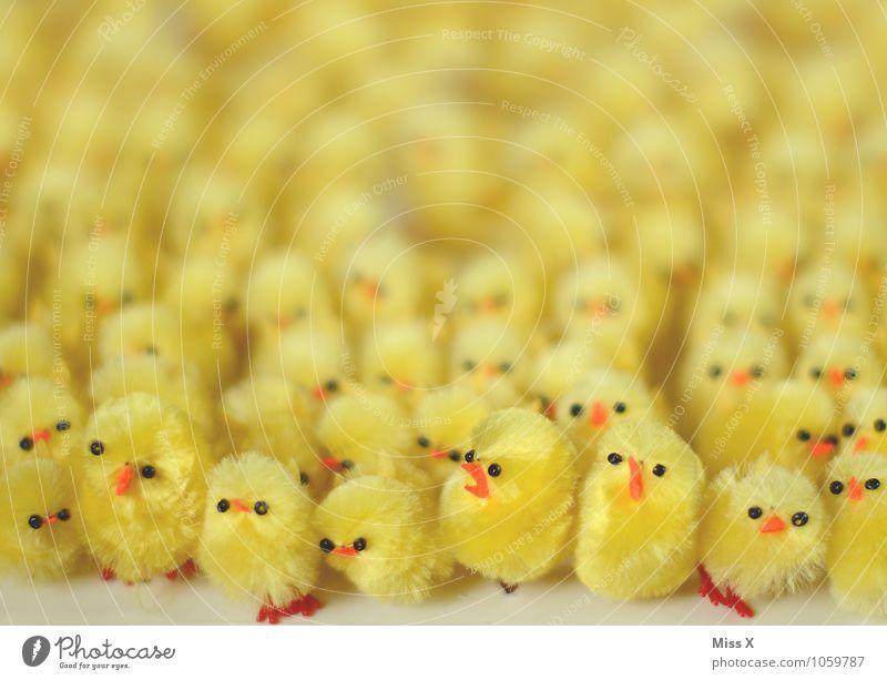 die Oster-Armee Dekoration & Verzierung Ostern Tier Vogel Tiergruppe Tierjunges Kitsch Krimskrams lustig viele gelb Gefühle Stimmung Freundschaft Zusammensein