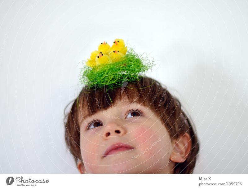 Kopfschmuck Ostern Mensch Kind Kleinkind 1 1-3 Jahre 3-8 Jahre Kindheit Hut Vogel Tiergruppe Tierjunges lustig Gefühle Stimmung Tierliebe Horst Nest Küken