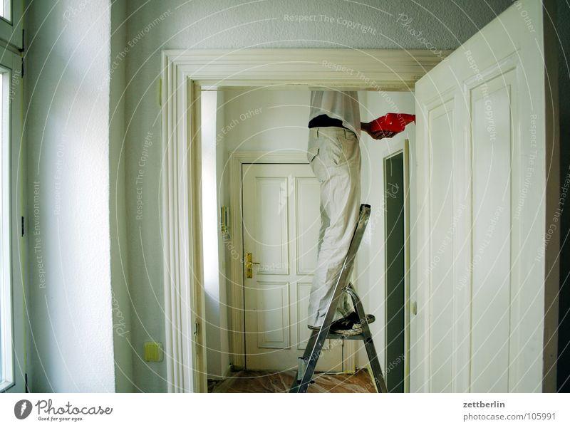 Renovierung Mensch weiß Farbe Arbeit & Erwerbstätigkeit Wand Fenster Wohnung Tür Häusliches Leben Umzug (Wohnungswechsel) Leiter Flur Renovieren Anstreicher
