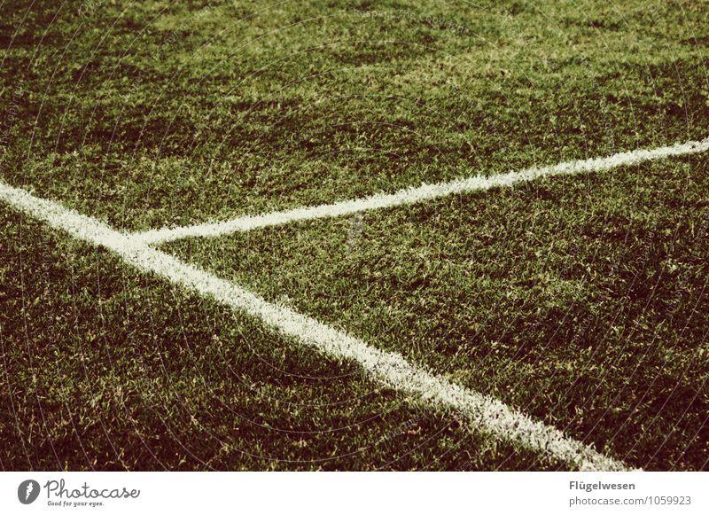 Mittellinie Ferien & Urlaub & Reisen Sport Spielen Freizeit & Hobby Erfolg Fußball Sportmannschaft Ball Sportveranstaltung kämpfen Sportler Stadion Fußballplatz