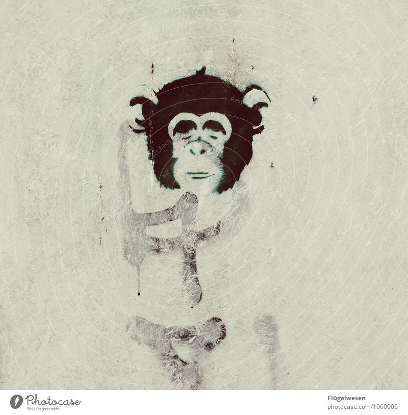 Großstadtaffe Lifestyle schön Körperpflege Ferien & Urlaub & Reisen Sightseeing Städtereise Tier 1 Kitsch Affen Graffiti Spray Tagger Wand streichen Künstler