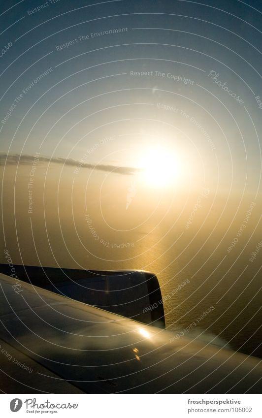 goodbye blue sky Flugzeug Triebwerke Sonnenuntergang Ferien & Urlaub & Reisen fliegen Luftverkehr Himmel Sonnenlicht Gegenlicht grell Leuchtkraft