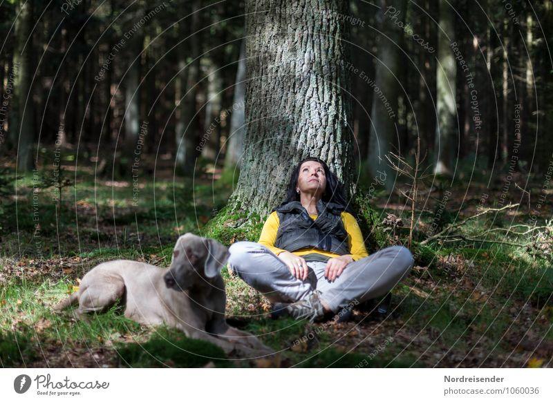 Auszeit... Hund Mensch Frau Natur Baum Erholung ruhig Tier Wald Erwachsene feminin Denken Lifestyle Freundschaft Idylle frei