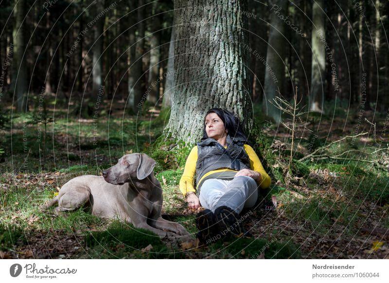 Ist da Was? Hund Mensch Frau Natur Sommer Baum Erholung ruhig Tier Wald Erwachsene feminin Lifestyle Zusammensein Freundschaft liegen