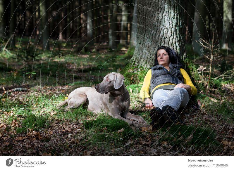 Aufpassen..... Lifestyle Sinnesorgane Erholung ruhig Freizeit & Hobby Mensch Frau Erwachsene Natur Baum Wald schwarzhaarig langhaarig Tier Haustier Hund sitzen